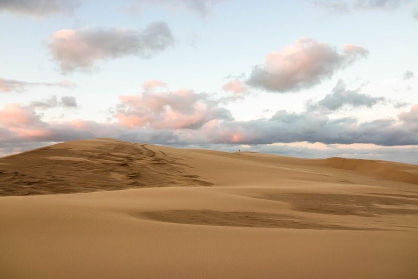 Cap-ferret-hiver-dune-pilat