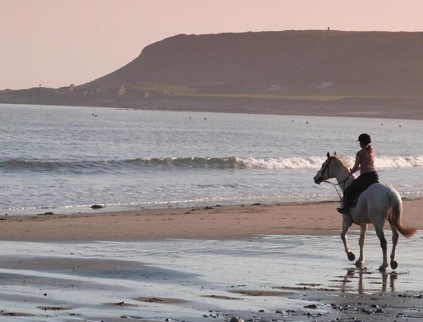 horse riding corsica