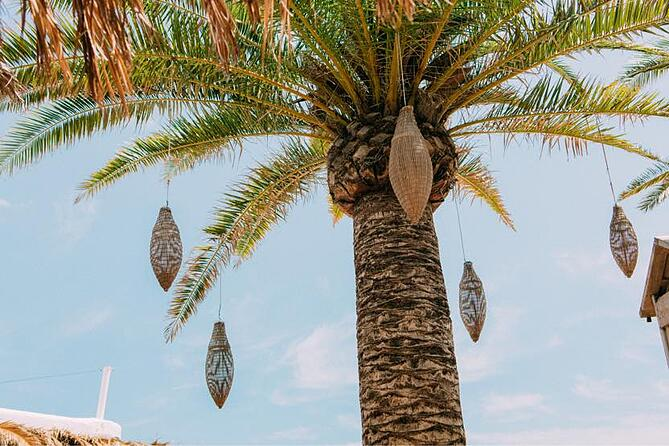 babylon-beach-ibiza-decor-1