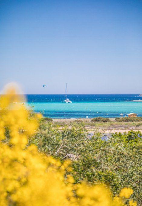 best-beaches-north-corsica-vegetation
