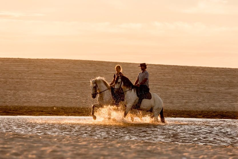 best-family-holiday-destinations-in-europe-horses-in-water