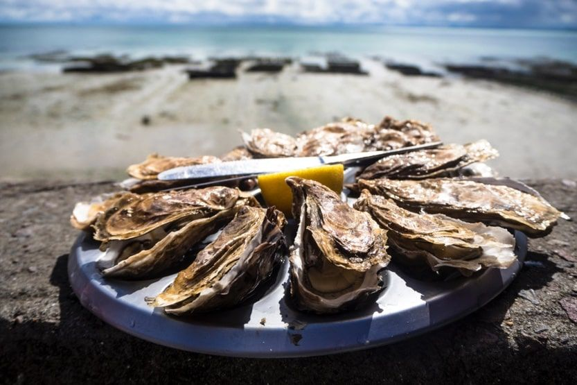 cap-ferret-france-oysters-min