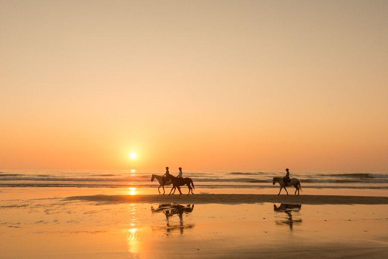 portugal-beach-holidays-horses