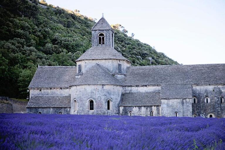 luberon-things-to-do-lavender