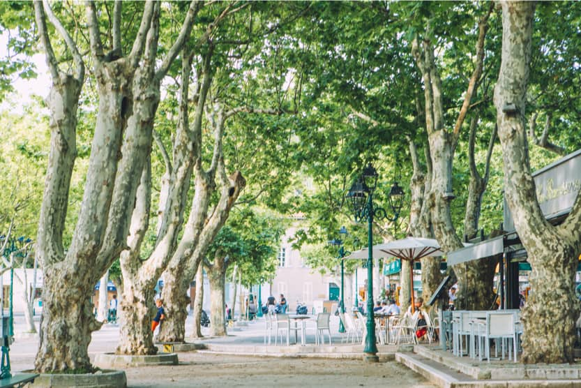 st-tropez-top-10-things-to-do-places-des-lices-min