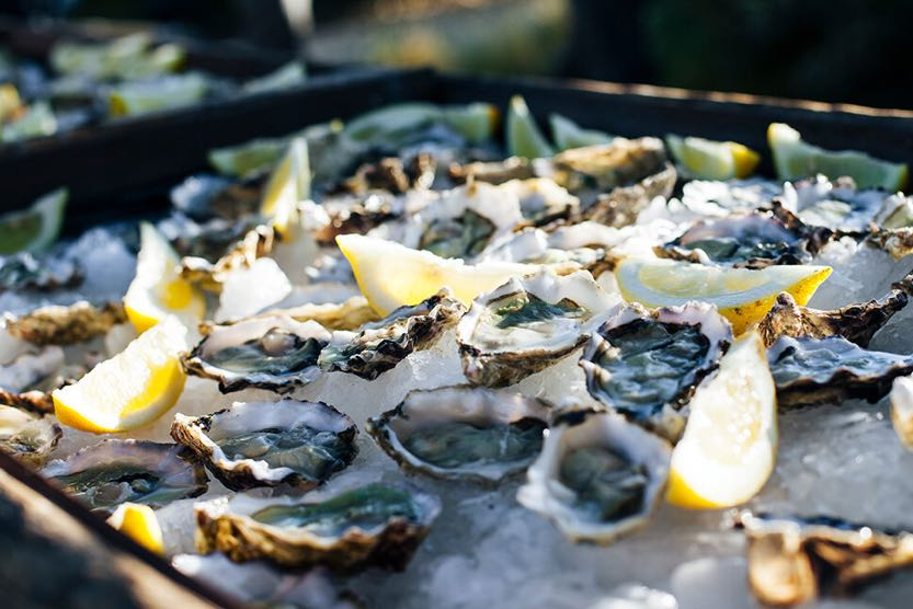 sublime-comporta-oysters