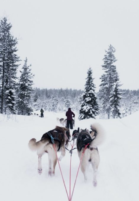 tailor-made-holidays-snow