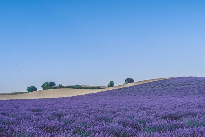 things-to-do-in-provence-new