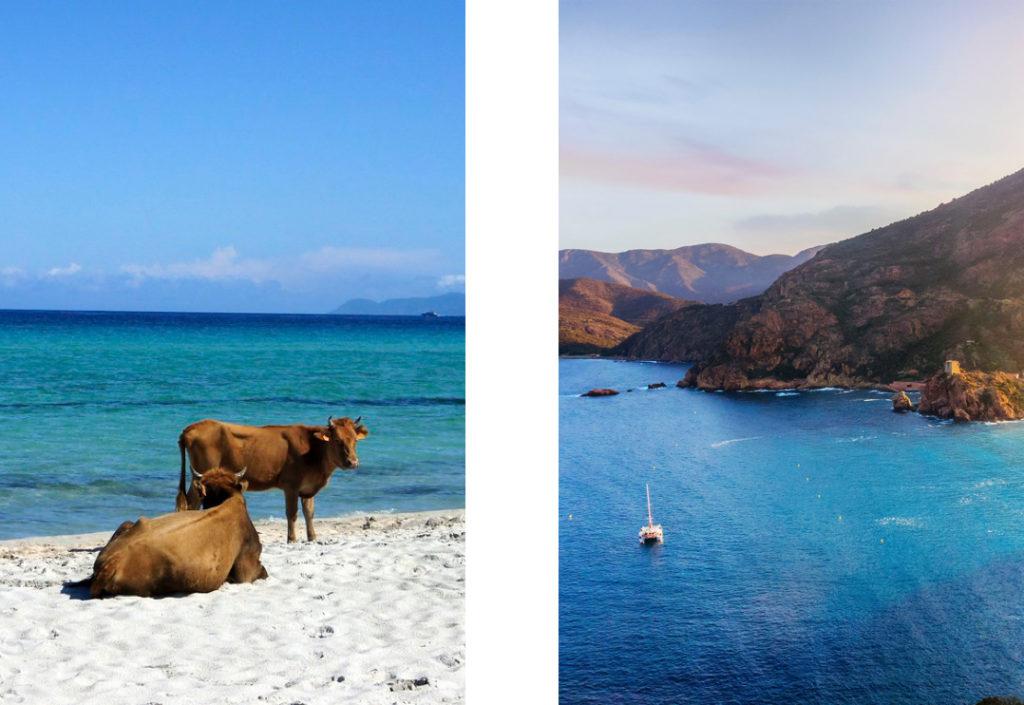vacances en Corse désert des Agriates