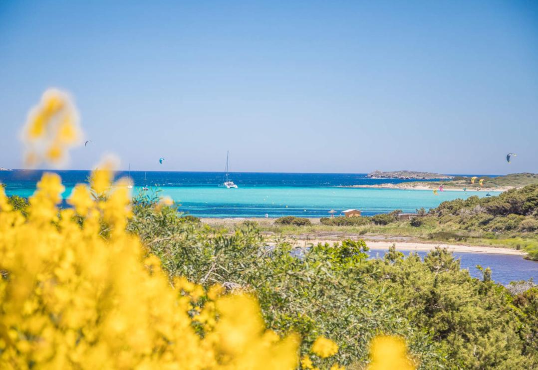 Des vacances en Corse, du nord au sud