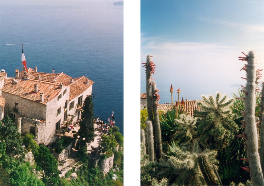 travel-spring-among-family-villa-to-rent-Cote-D'Azur-le-collectionist