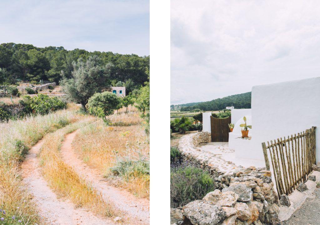 vacation-rental-luxury-villa-le-collectionist-ibiza-12
