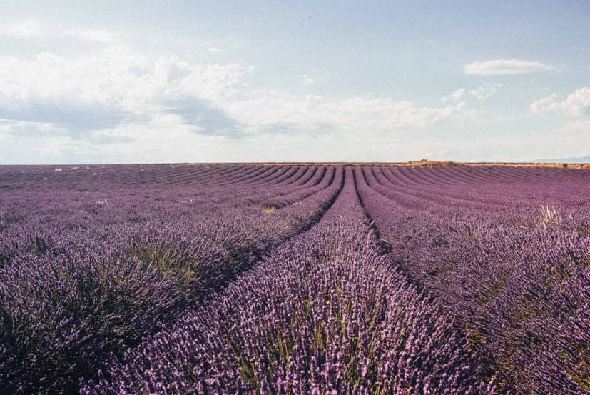The ideal French Countryside vacation