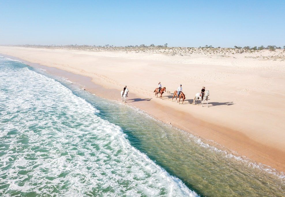 Discover the dunes of Comporta on horseback